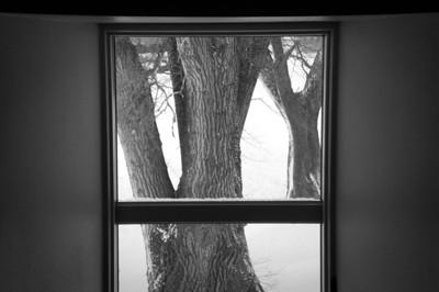 Farm house - window art - through window looking east - 3
