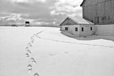 Farmstead - scenic - snow prints