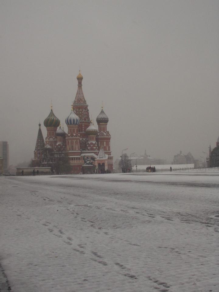 snowy basil