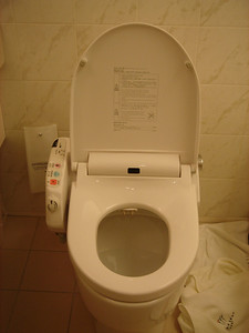 toilet seat with a bidet and a seat warmer