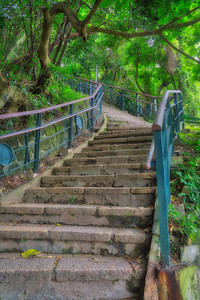Stairs on Elephant Mountain