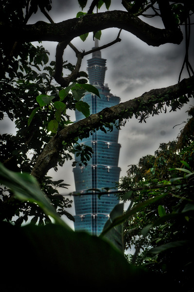 Taipei 101 through the trees
