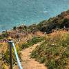 Descending the Sunrise Park along the Igidae Coastal Walk (cliff side walk) in Busan, Korea.