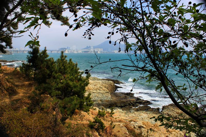 Along the Igidae Coastal Walk (cliff side walk) in Busan, Korea.