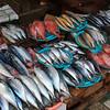 Fish market in Busan, Korea.