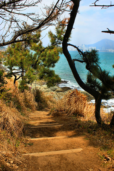 Along the Igidae Coastal Walk (cliff side walk) in Busan, Korea.