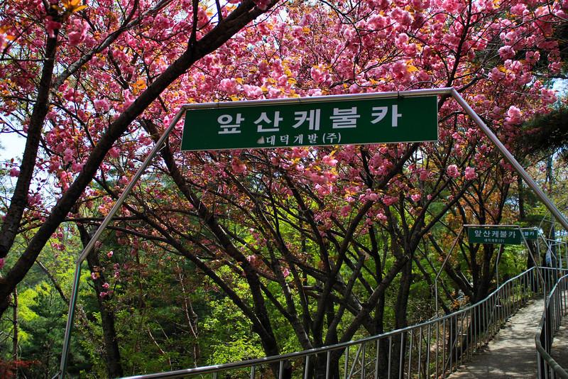 Apsan Mountain in Daegu, Korea.
