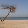 Zallaq Beach in Bahrain.