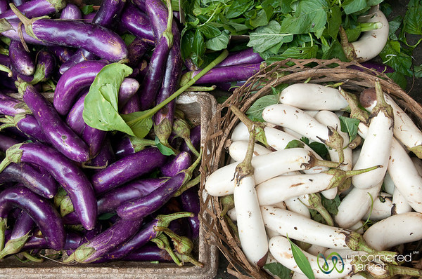 Purple and White Aubergines - Bali, Indonesia