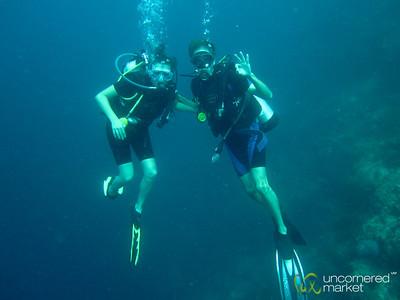 Scuba Diving Portraits - Menjangan Island, Bali