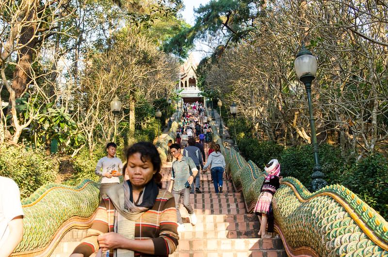 The steps up to Wat Phra Doi Suthep.