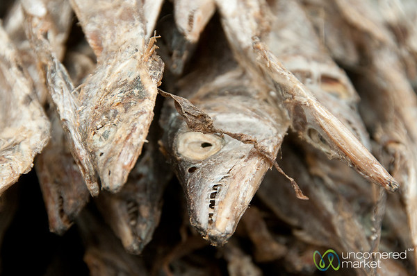 Dried Fish, Up Close - Bandarban, Bangladesh