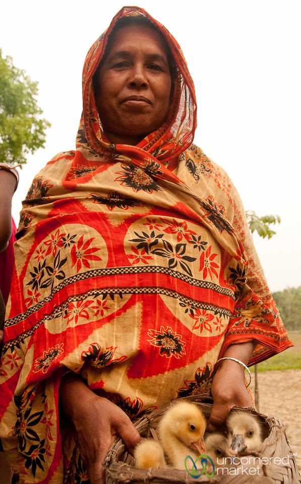 Taking Care of the Chicks - Hatiandha, Bangladesh