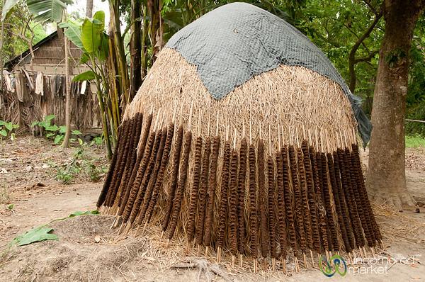 Dung Covered Jute Sticks Drying in Sun - Hatiandha, Bangladesh