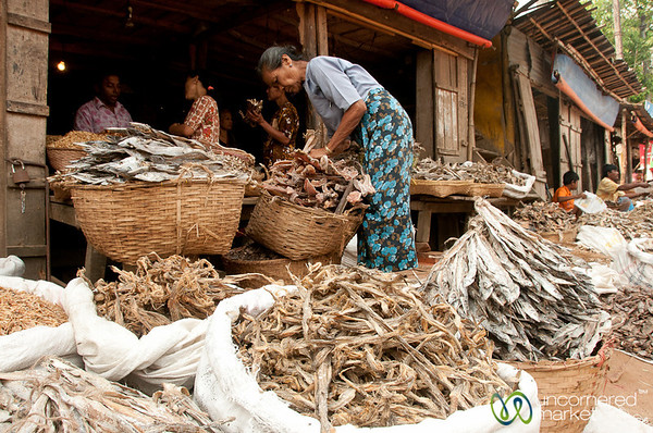 Dried Fish Stand in Bandarban, Bangladesh