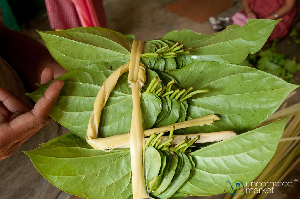 Betel Leaf Bundle in Khashia Village - Srimongal, Bangladesh