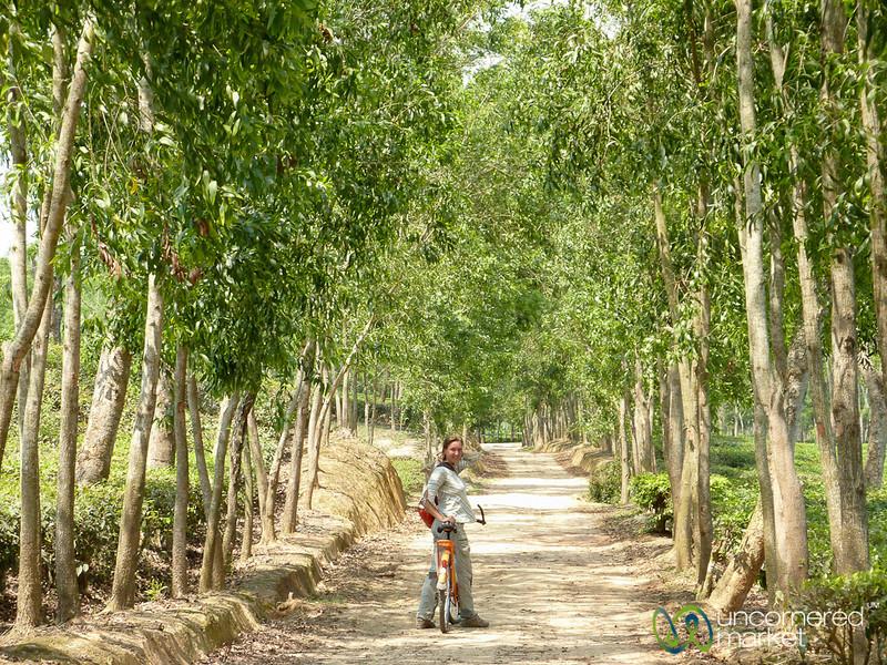 Audrey Rides Bike Near Madhabpur Lake - Bangladesh