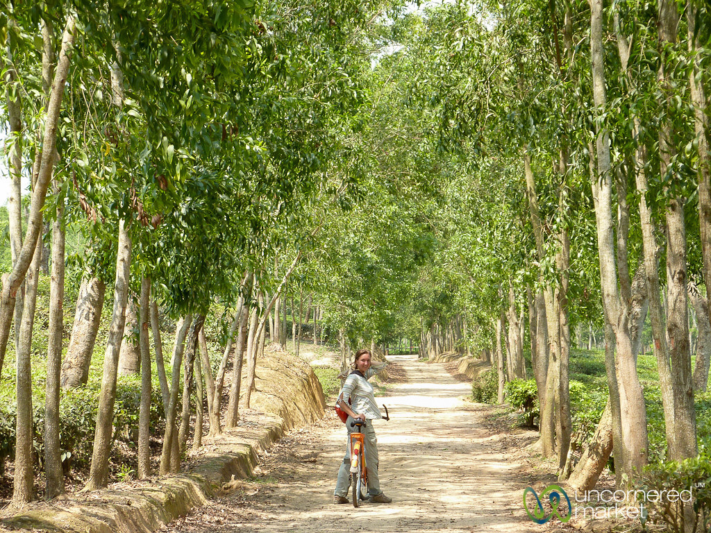 Audrey Rides Bike Near Madhabpur Lake - Bangladesh