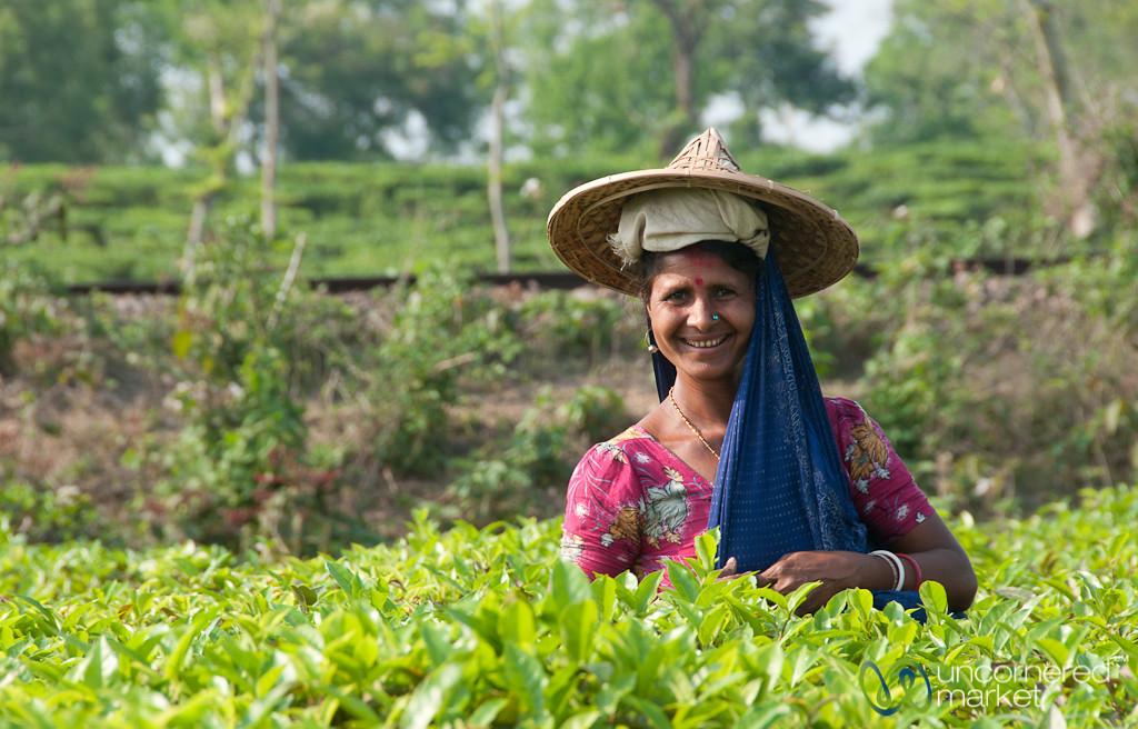 Friendly Tea Picker - Srimongal, Bangladesh