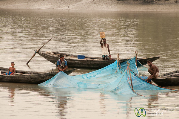 Fishing on the River - Bangladesh