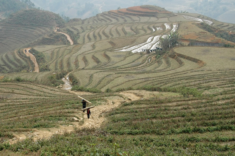 Men Walking through Steep Hills - Sapa, Vietnam