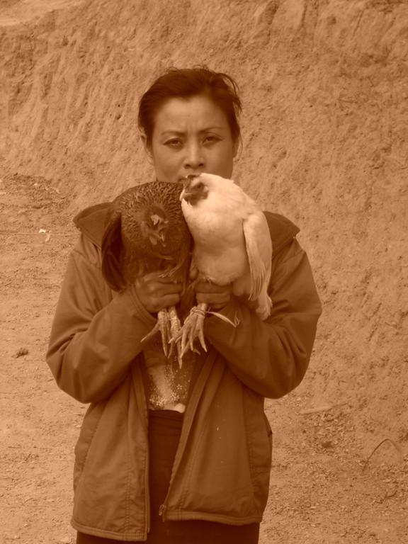 Woman with Chickens - Luang Prabang, Laos