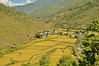 Traditional farm houses and rice terraces on the way to Thimphu