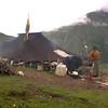 Bh 1636 Yakherderstent in Golung Chu