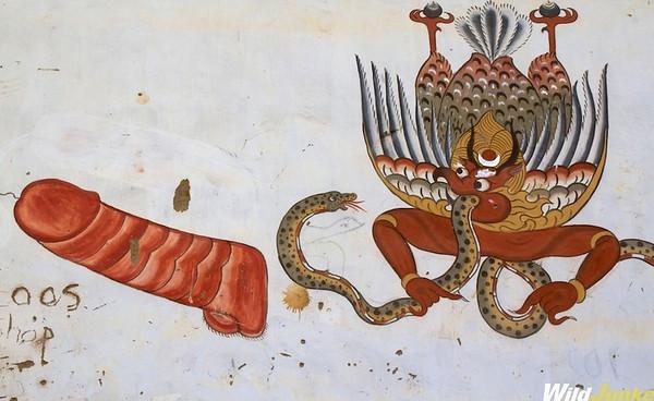 Unusual Discoveries Phallic Symbols In Bhutan Wild Junket