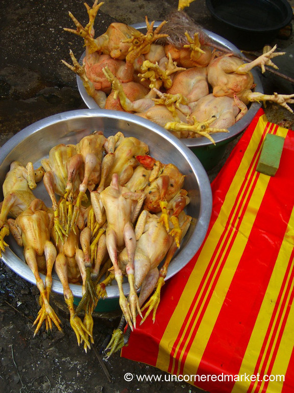 Chickens - Rangoon, Burma (Yangon, Myanmar)