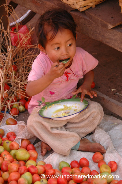 Burmese Child Surrounded by Tomatoes - Kalaw, Burma