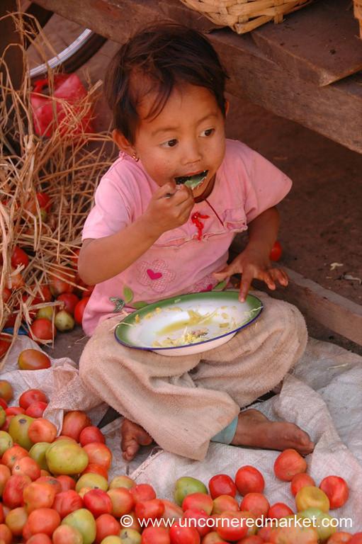 Burmese Child Surrounded by Tomatoes - Kalaw, Burma