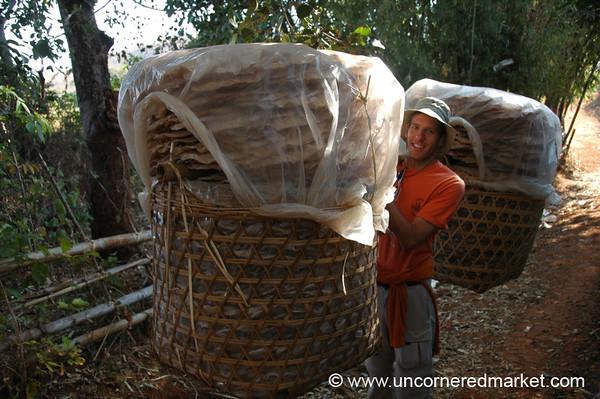 Dan Carries Big Baskets - Inle Lake, Burma