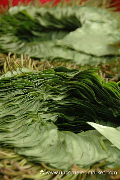 Betel Leaves - Mandalay, Burma