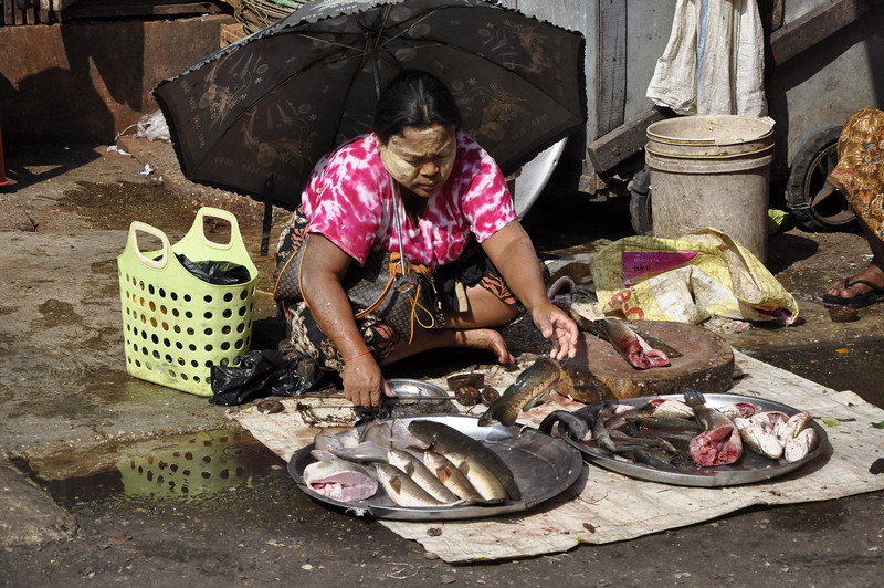 Fish Market Yangon