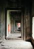 Siem Reap - Angkor Wat - Walk of Buddhas