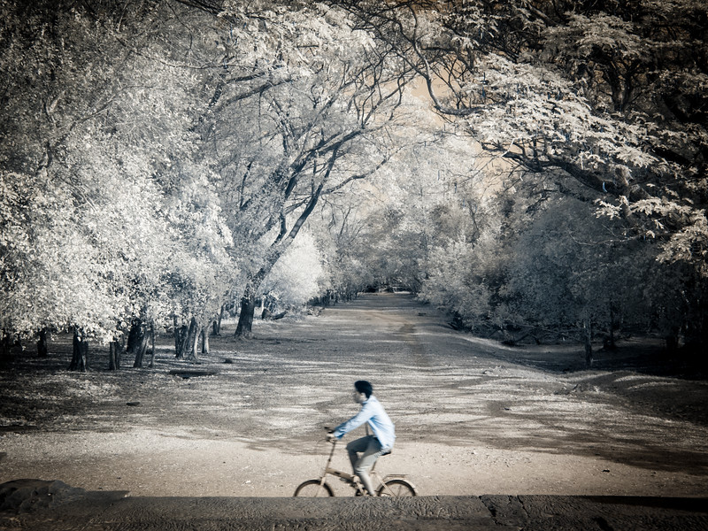 A boy rides his bike past Angkor Wat...Infrared photo.