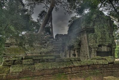Ruins at Ta Prohm in Angkor Wat, Cambodia