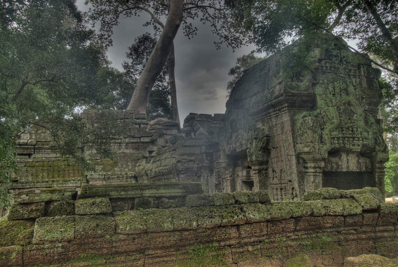 Ruins at Ta Prohm in Angkor Wat, Cambodia