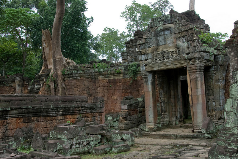 Doorway and Tree at the Angkor Wat temple complex