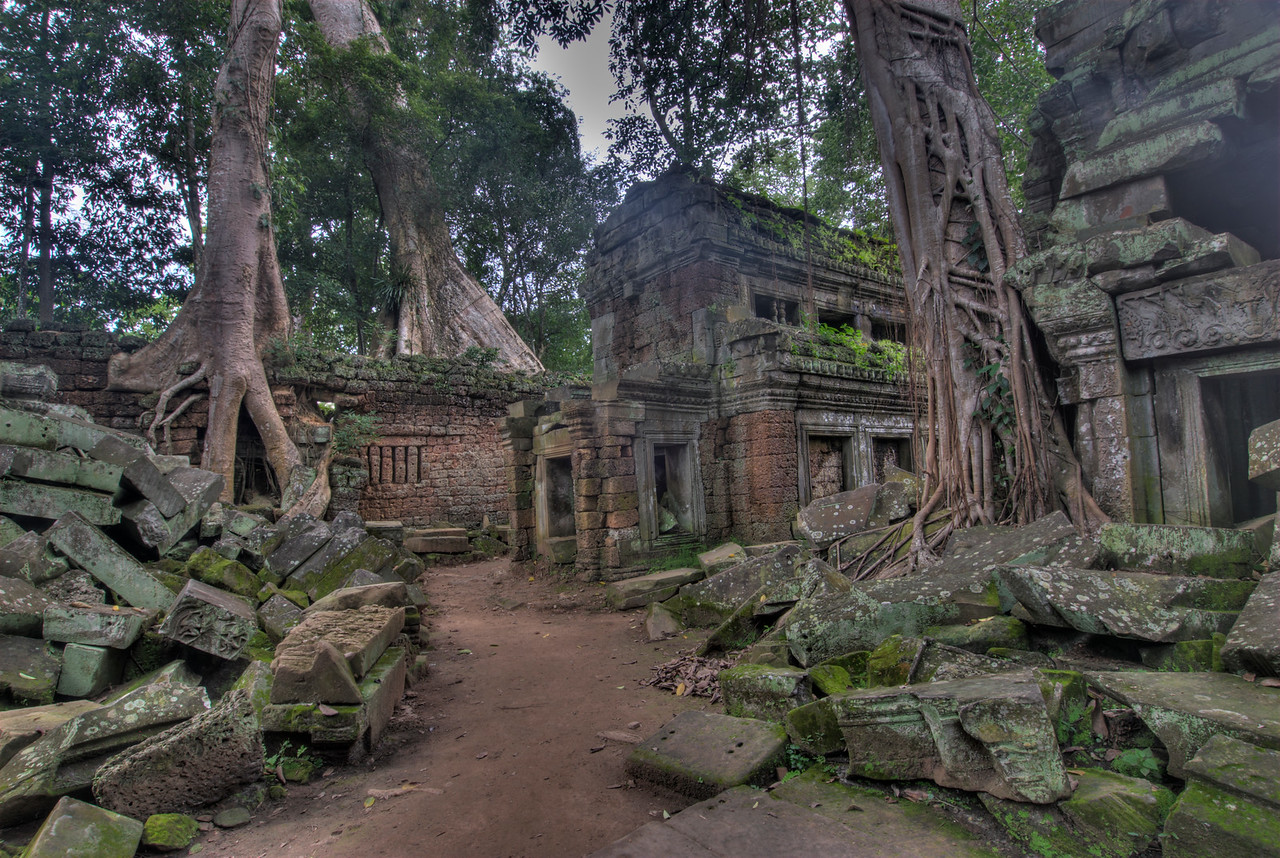 Trees and ruins at Ta Prohm inside the Angkor Wat complex