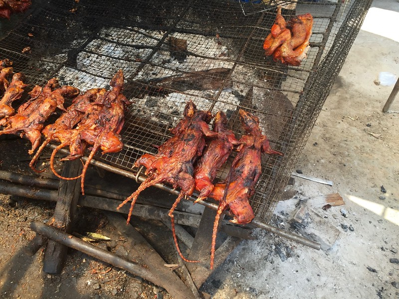 Grilled Rat - Intrepid Travel Cambodia - Review: Cambodian Traveler