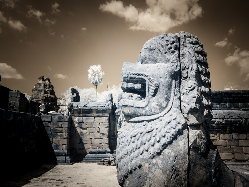 A lion guards the Bakong Temple.