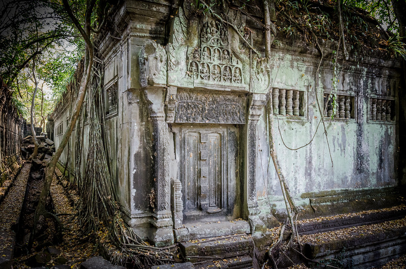 This part of the temple is largely intact, but the jungle is working hard to take over.