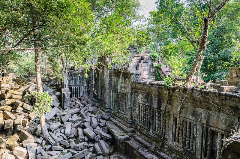 The trees growing on the temples do a lot of damage.