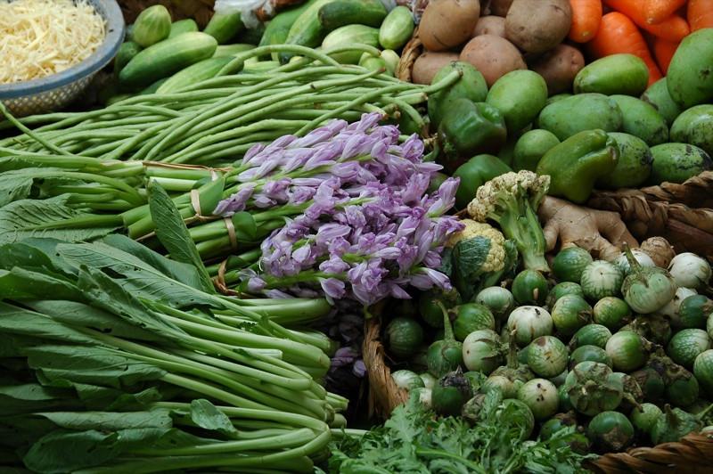 Vegetables and Flowers - Battambang, Cambodia