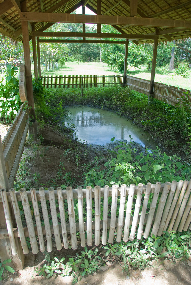 Fenced mass grave in Killing Fields of Phnom Penh, Cambodia