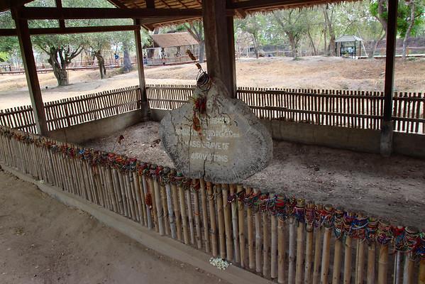 Mass Grave at Cambodia Killing Fields