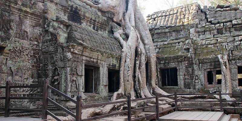 Ta Prohm temple Siem Reap Cambodai