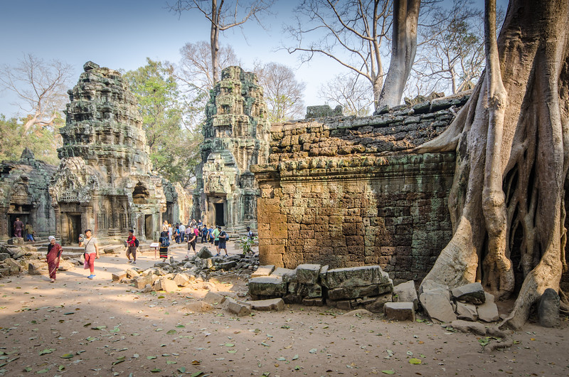 Wandering at Ta Prohm.